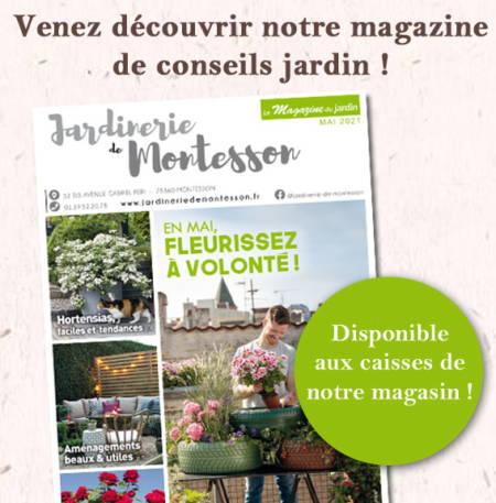 magazine-montesson-mai-21