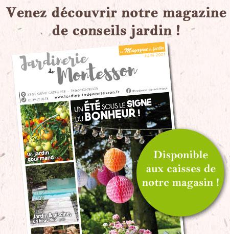 magazine-montesson-juin-21